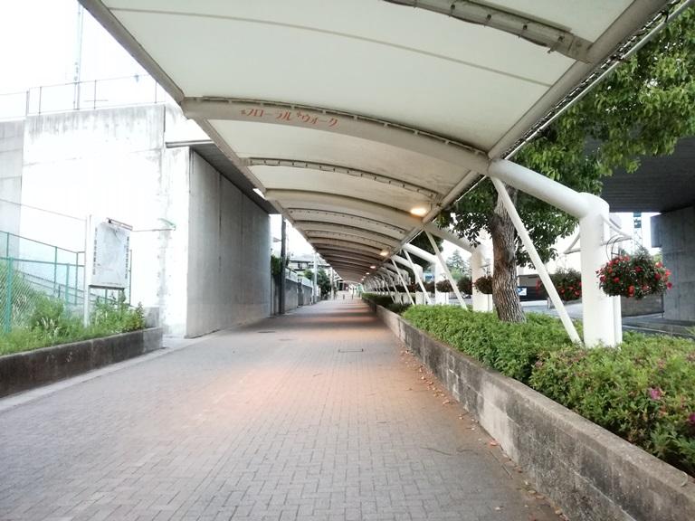 中京競馬場前道路1