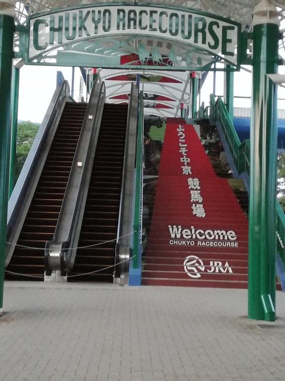 中京競馬場階段