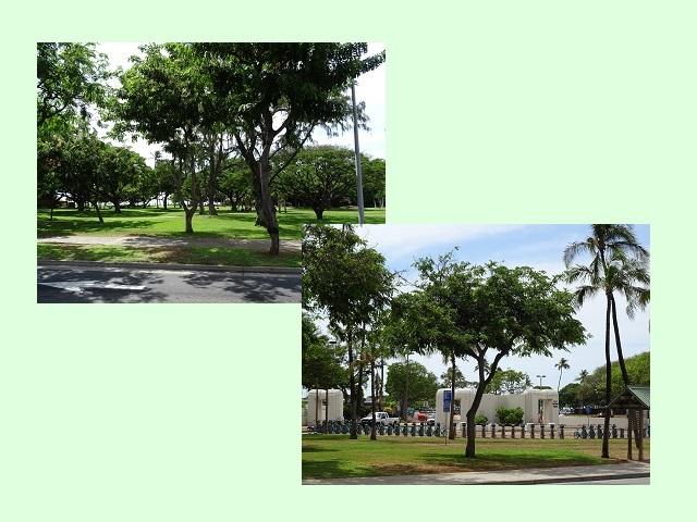 ハワイ風景1