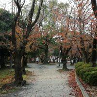 三崎公園3