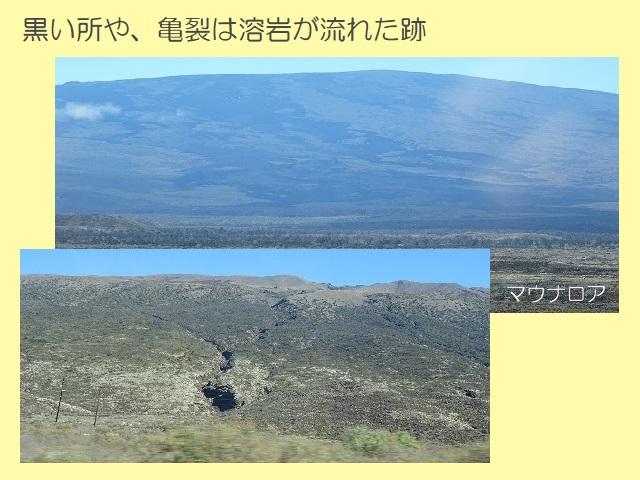 ハワイ島 溶岩が流れた跡