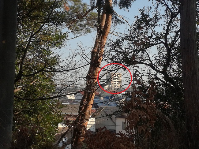 高鴨神社風景(豊明市)