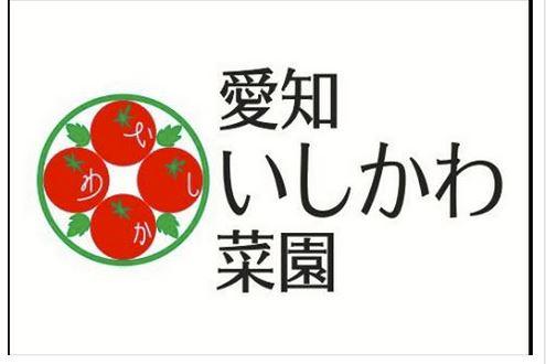 豊明市沓掛町 いしかわ菜園のミニトマト