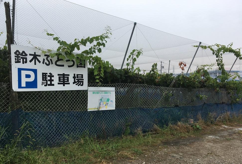 鈴木ぶどう園 駐車場 豊明市二村台のぶどう園