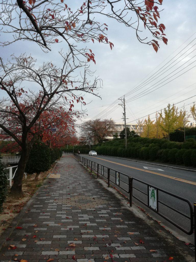 三崎公園1(豊明市三崎町)