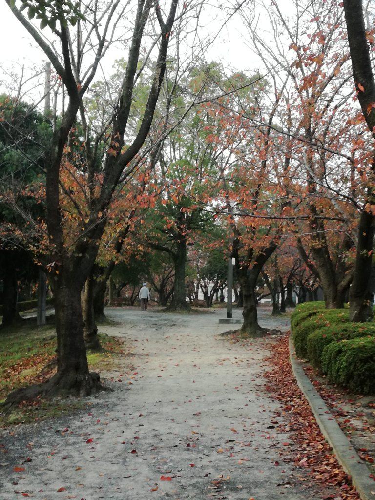 三崎公園3(豊明市)