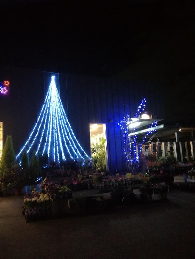 LAP ガーデン(豊明市)イルミネーション