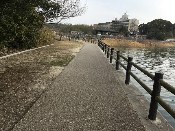 勅使水辺公園 遊歩道