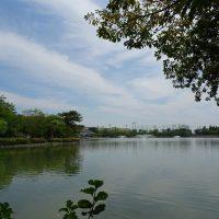 三崎水辺公園 令和元年5月